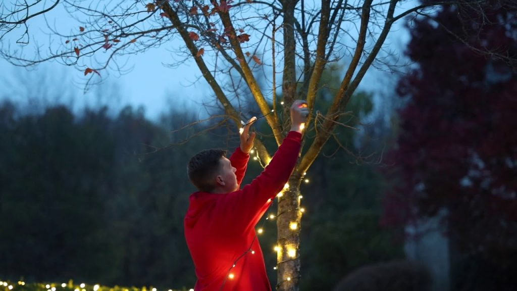 Tip From a Pro – Christmas Light Series (3/10) How to spiral-canopy wrap a tree